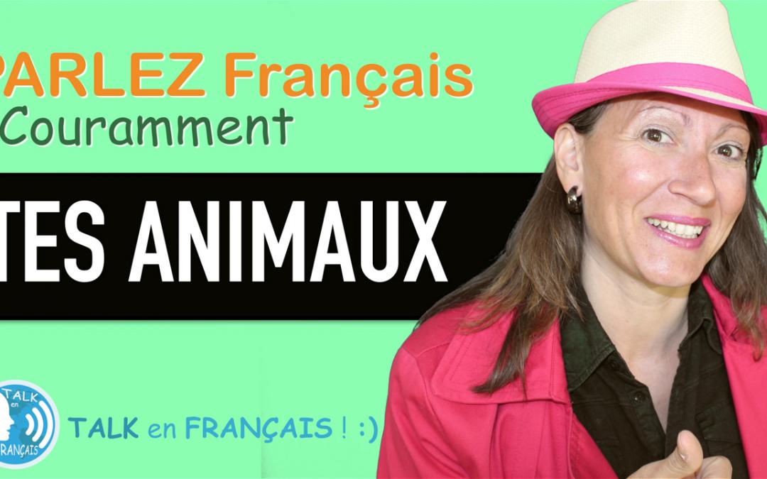 «TES ANIMAUX» Apprendre à Parler Français Couramment ! 5 minutes.
